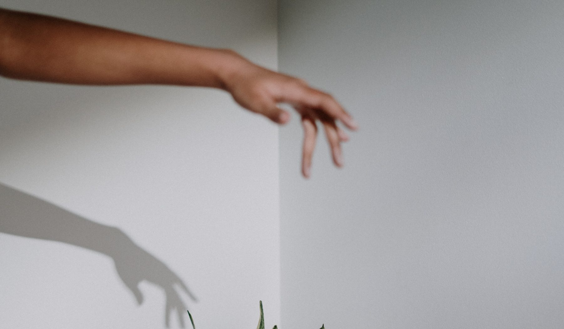 Ein verschwommenes Bild eines Armes mit seinem Schatten an der Wand.